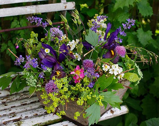 buketter fra naturen og haven