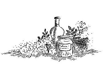 Snapseurter krydderurter
