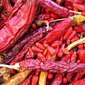 Høst og opbevaring af chili