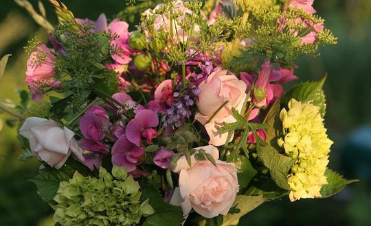Haven er fuld af dejlige blomster – lige til at plukke en dejlig